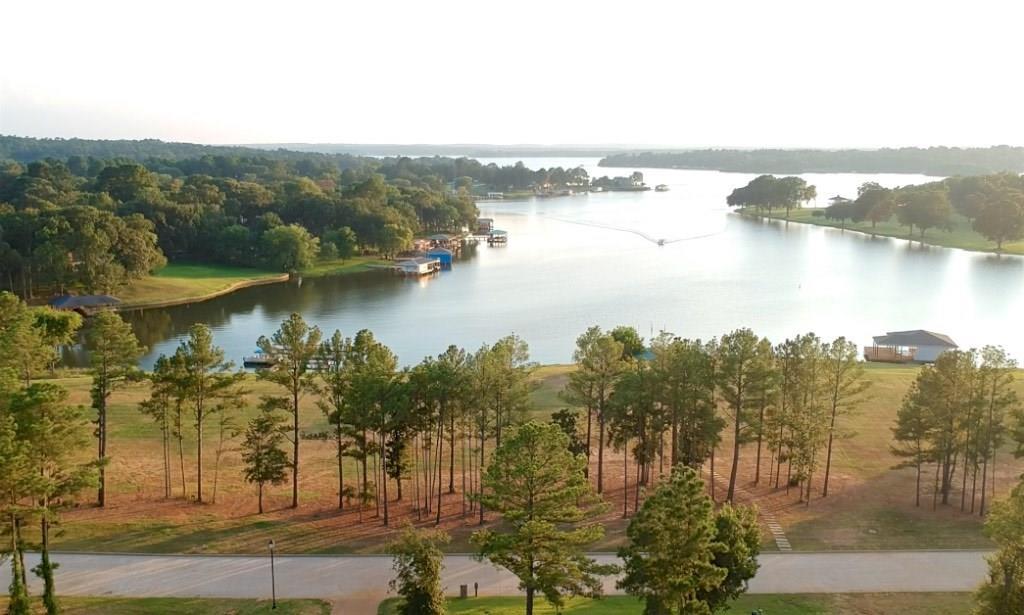22239 Mallards Cove Ct Property Photo - Bullard, TX real estate listing