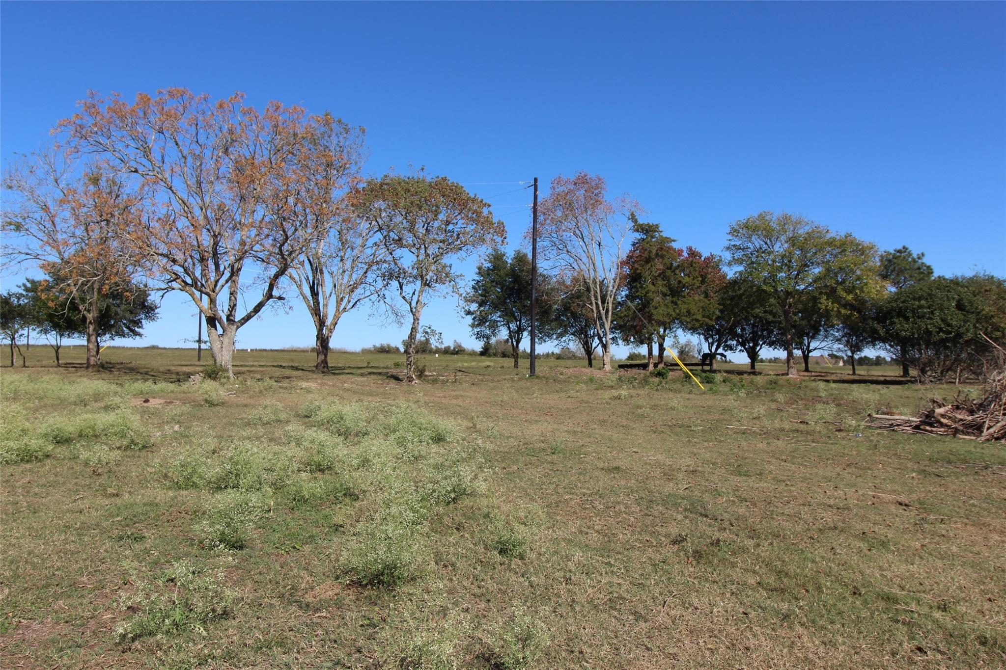Lot 5 Randle Hill Road Property Photo - Brenham, TX real estate listing