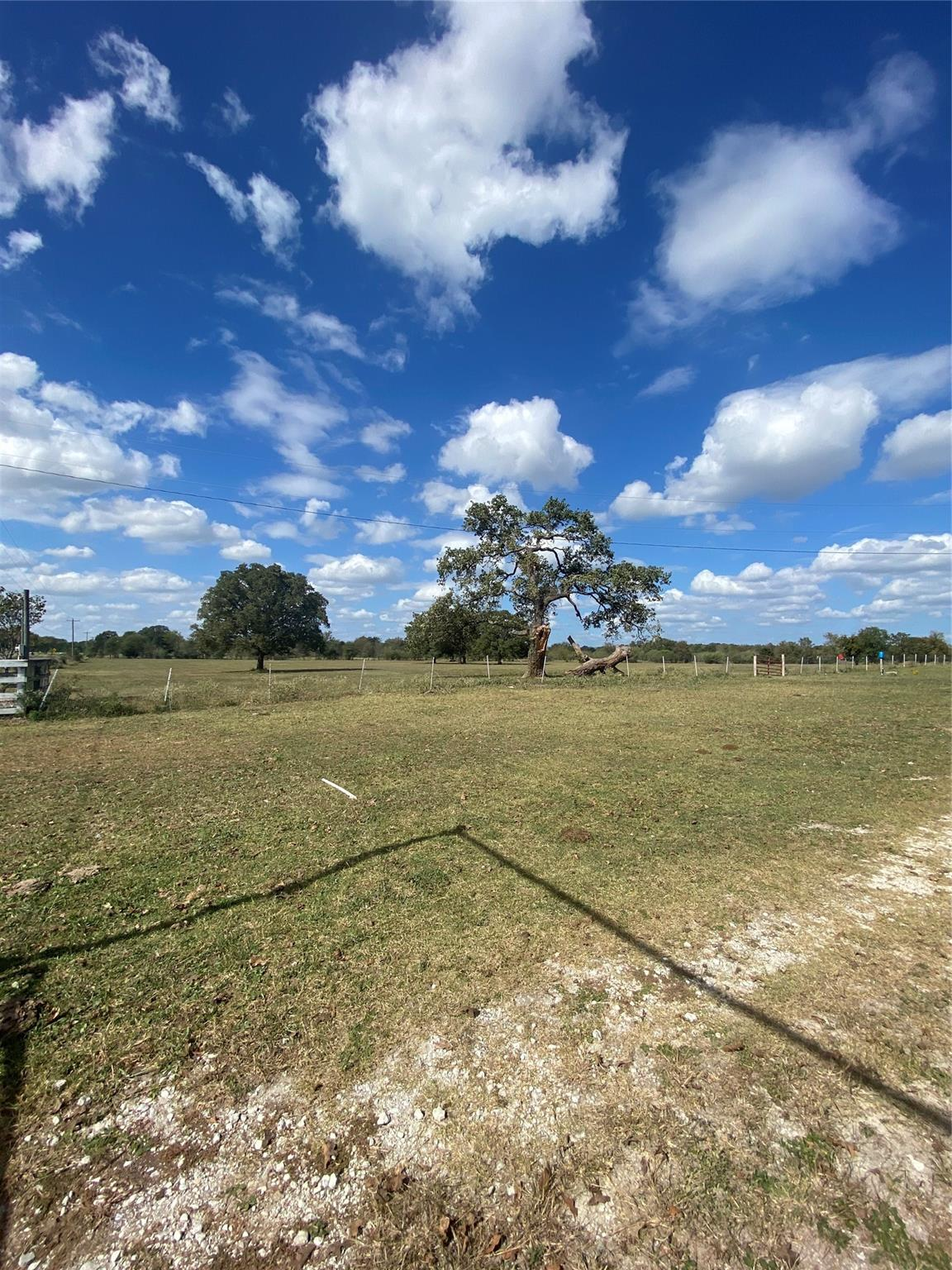 6265 Highway 75 S Property Photo - Madisonville, TX real estate listing