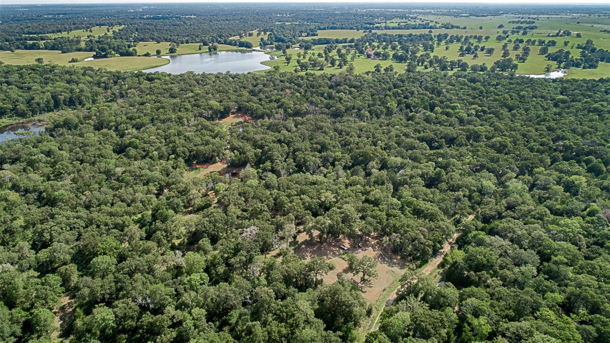 TBD Old Bundick Road Property Photo - Hearne, TX real estate listing