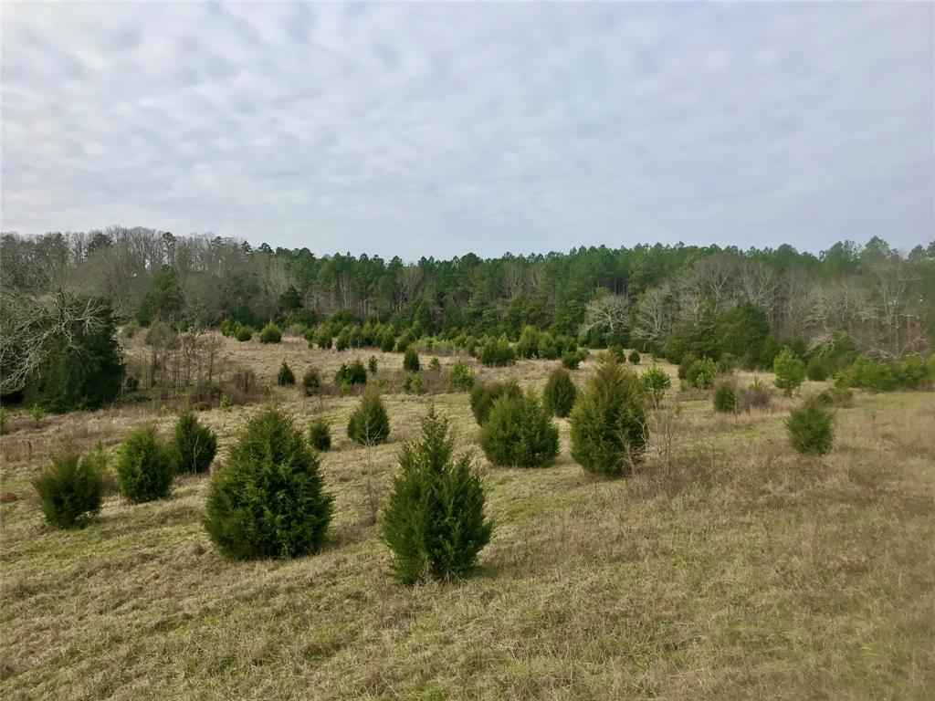 4535 Greenwood Church Road, Other, GA 30817 - Other, GA real estate listing