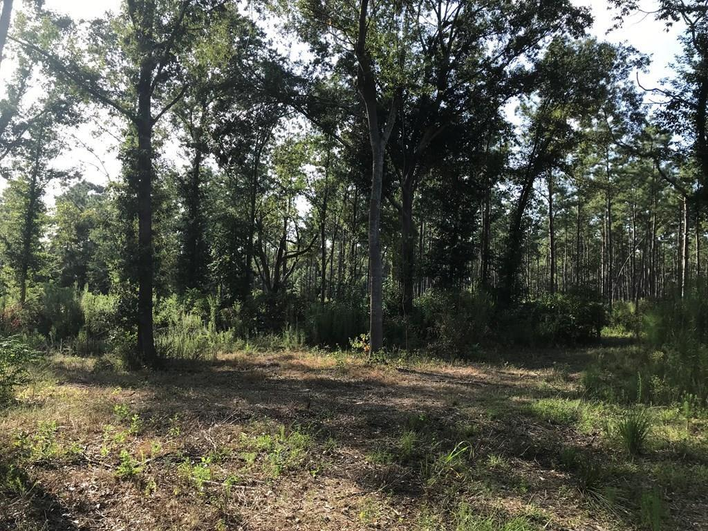 00 E STATE HWY 294 Property Photo - Elkhart, TX real estate listing