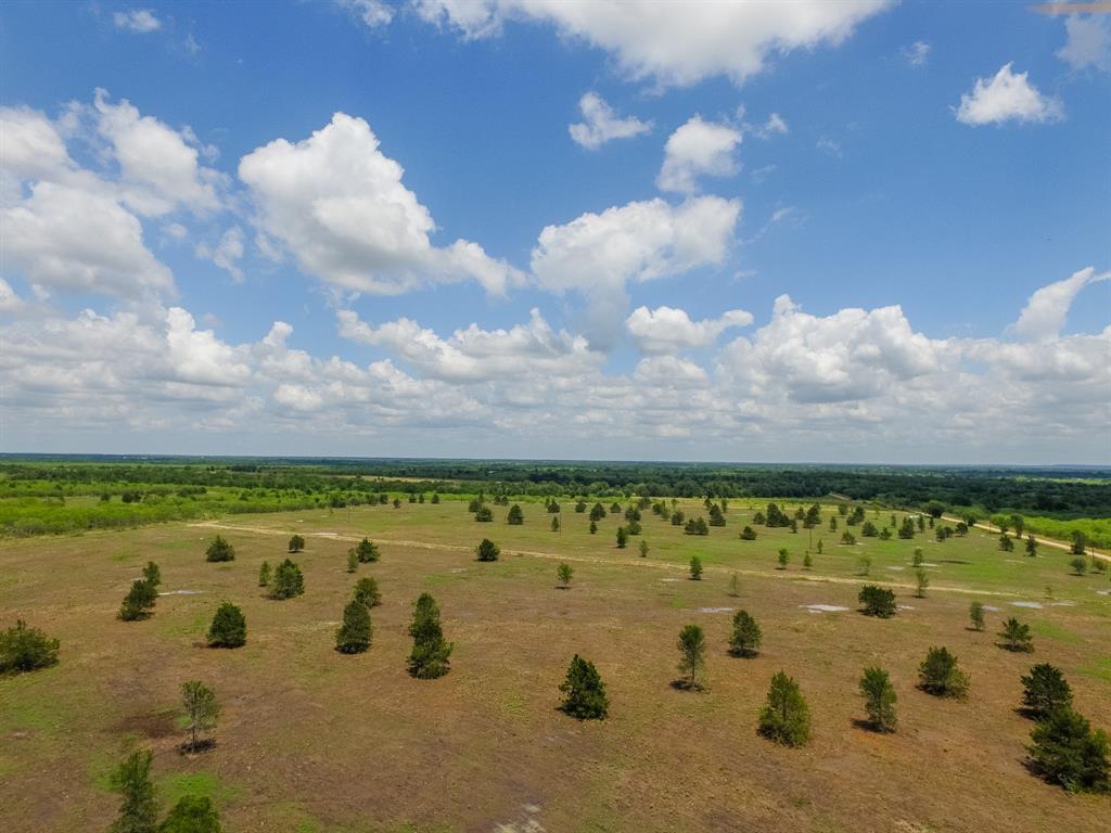 006 County Road 451 Property Photo - Waelder, TX real estate listing