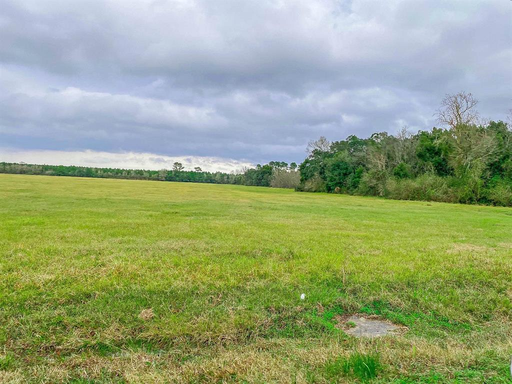 TBD County Road 109, Devers, TX 77538 - Devers, TX real estate listing