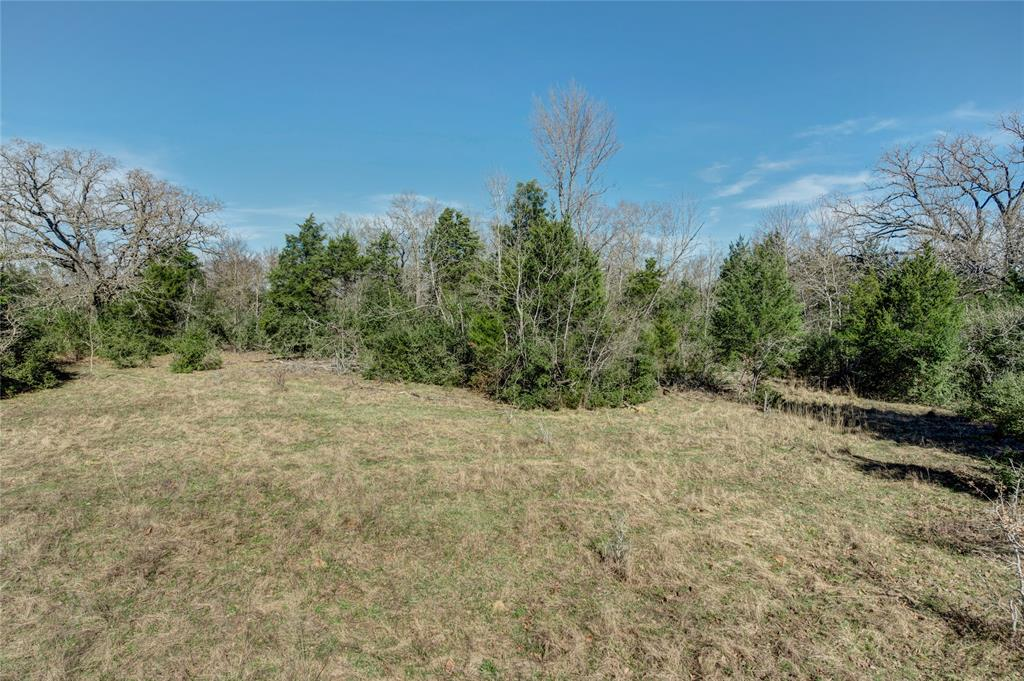 TBD,Old Bundick,Road, Hearne, TX 77859 - Hearne, TX real estate listing