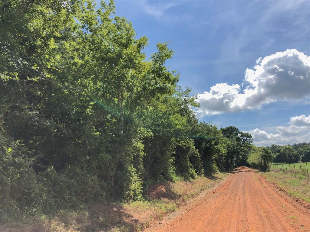 0 CR 1410 Property Photo - Jacksonville, TX real estate listing