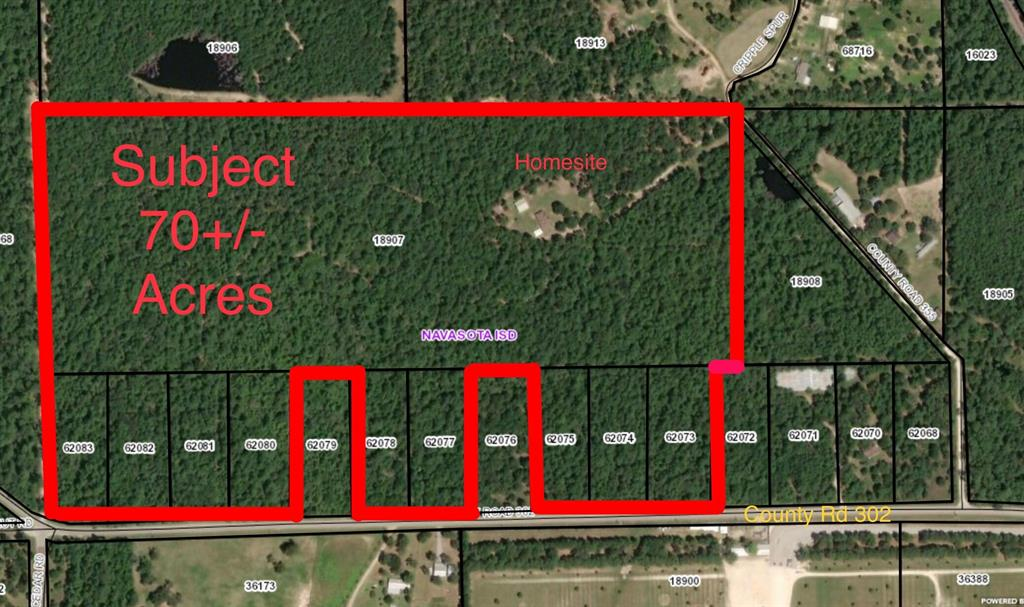 0 County Road 302, Plantersville, TX 77363 - Plantersville, TX real estate listing