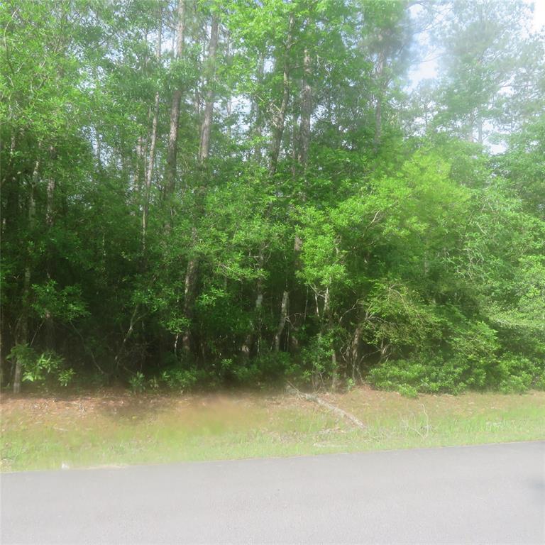 000 WILDWOOD Drive Property Photo - Village Mills, TX real estate listing