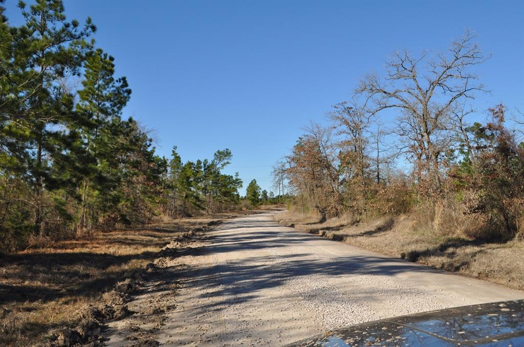 000 Hopewell Road Property Photo - Bedias, TX real estate listing