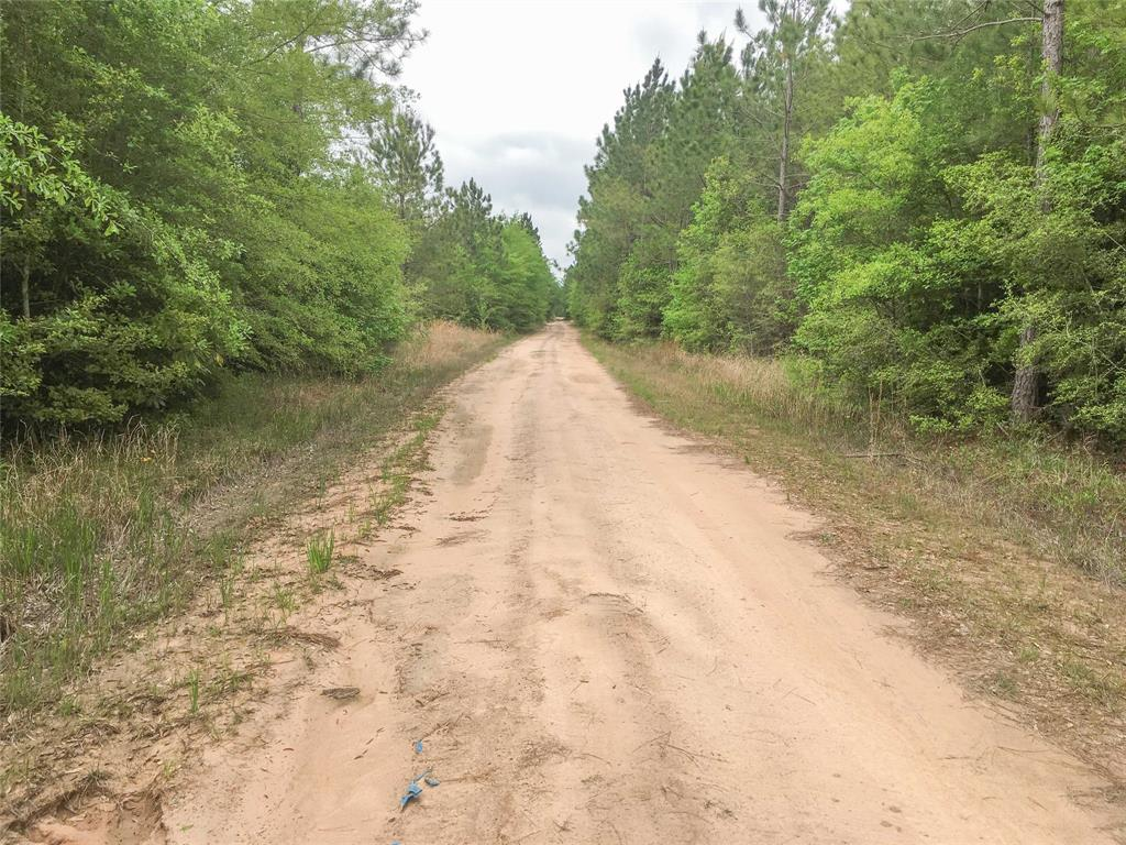 000 Off of Post Oak Road, Kountze, TX 77625 - Kountze, TX real estate listing