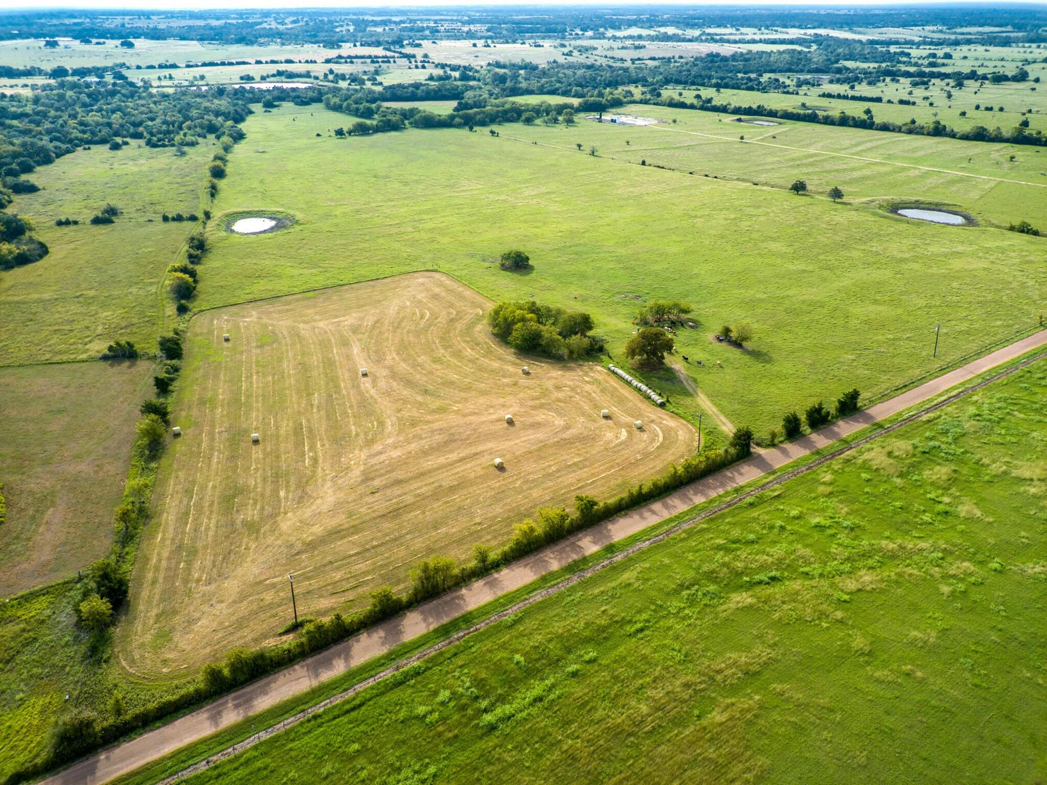 1403 N Hackemack Road N Property Photo - Round Top, TX real estate listing