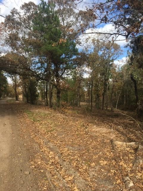 00 Raven Hill Road, Oakhurst, TX 77359 - Oakhurst, TX real estate listing