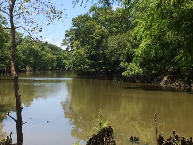 0 Hilltop Road Property Photo - Beasley, TX real estate listing