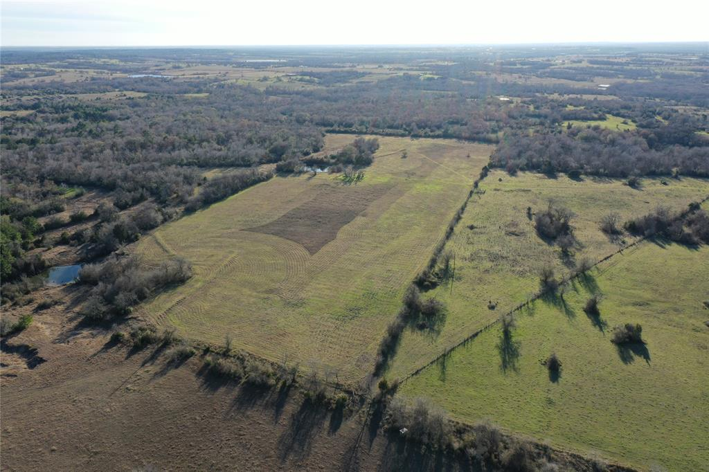 TBD County Road 406 Property Photo - Navasota, TX real estate listing