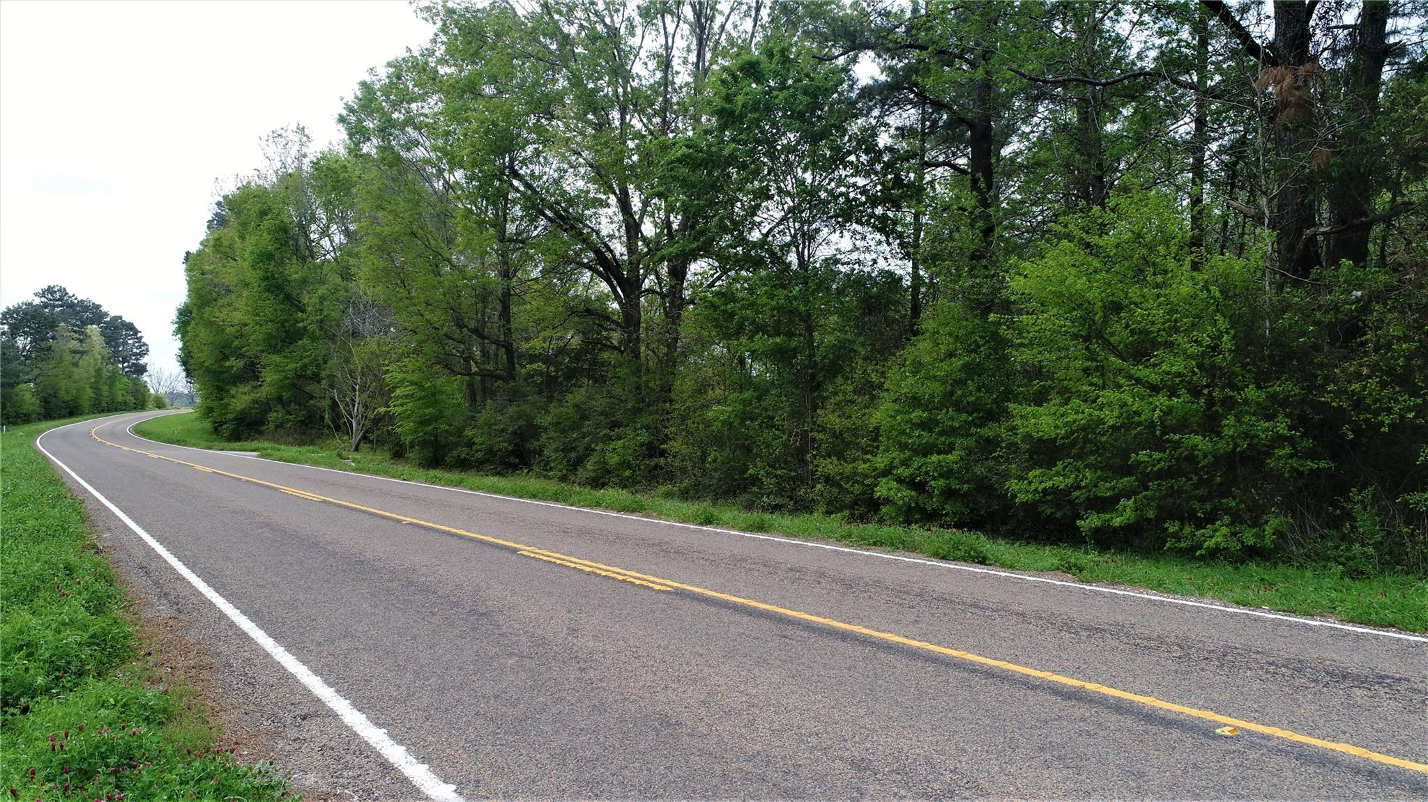 TBD FM 2781 Property Photo - Pennington, TX real estate listing