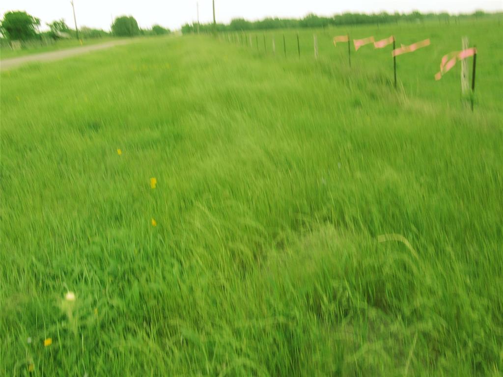 0000 FM 2761 B Property Photo - Bernardo, TX real estate listing