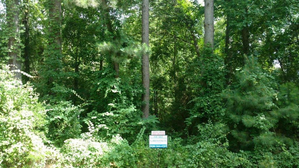 TBD Highway 7 E Property Photo - Kennard, TX real estate listing