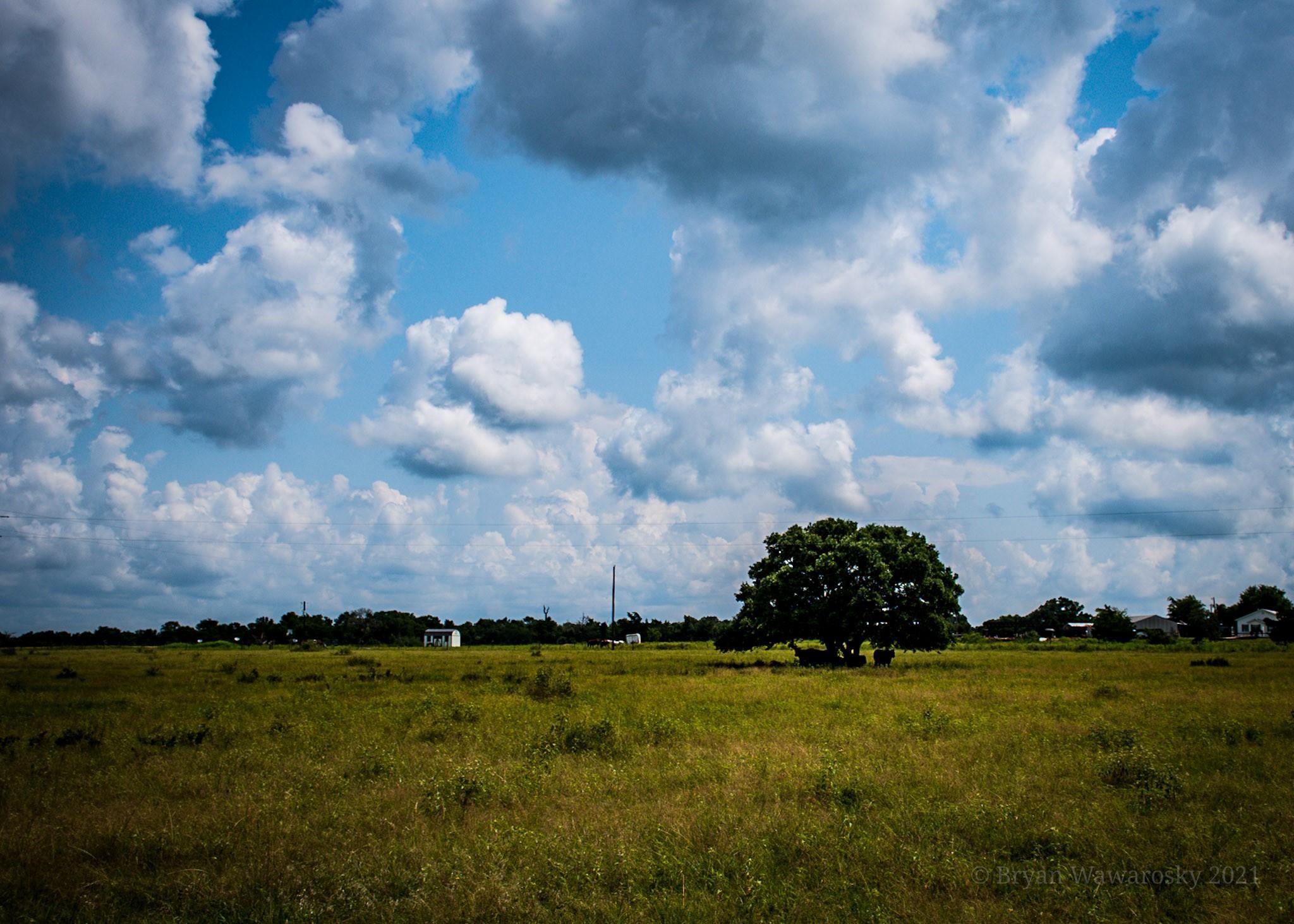 3000 Lomax Harmel Tract 4 Road Property Photo 1