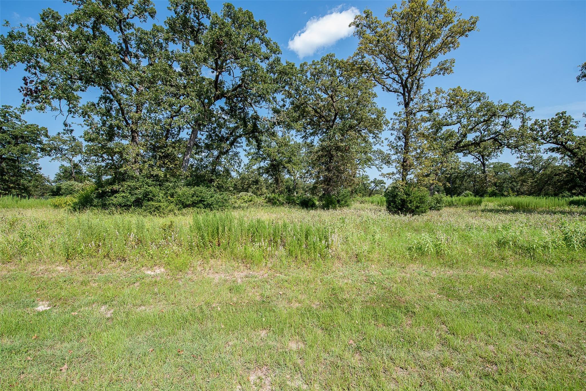 10838 Chamberlain Drive Property Photo - Iola, TX real estate listing