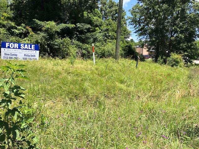 135 Old Trinity Road N Property Photo - Onalaska, TX real estate listing