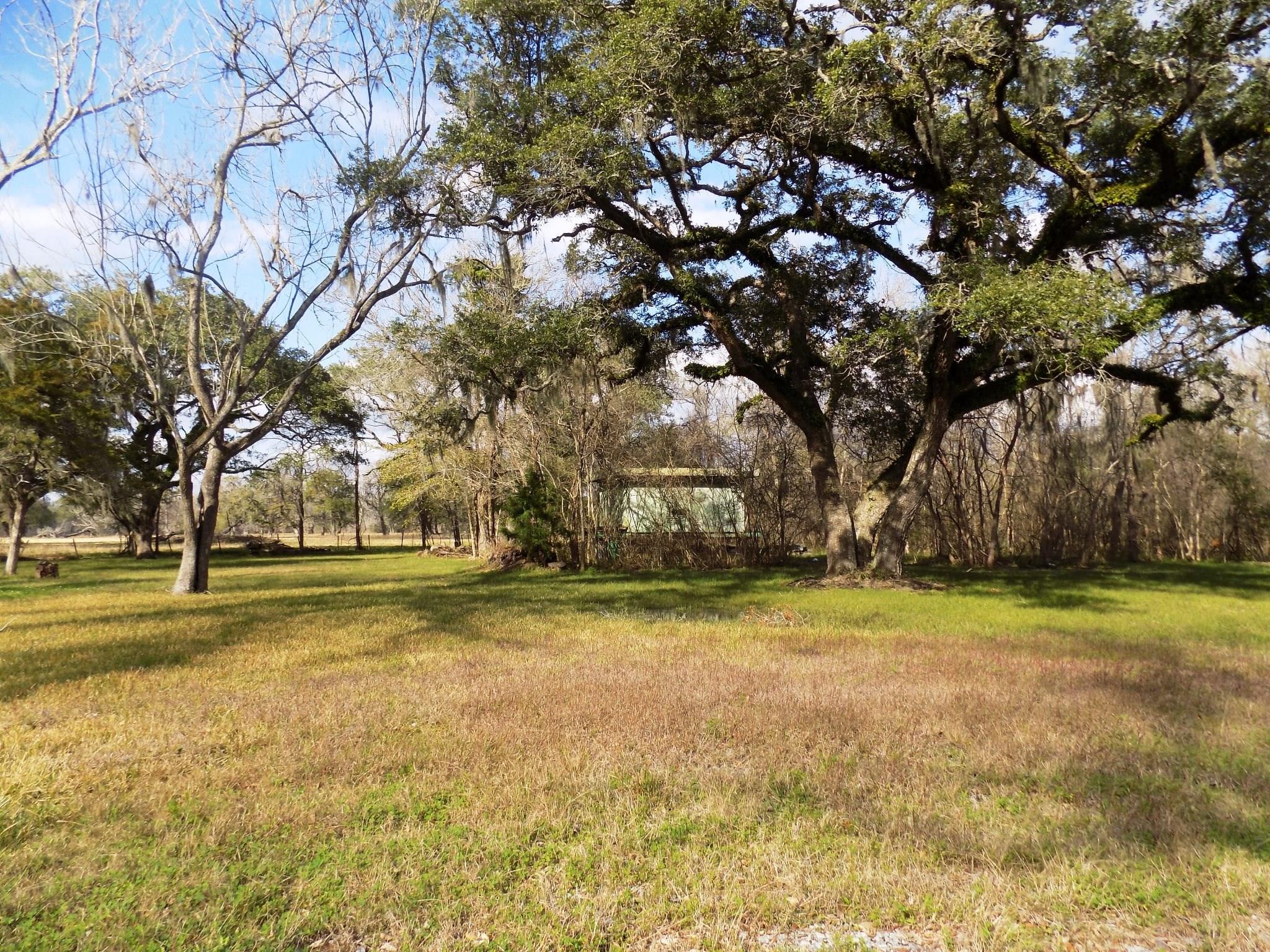 7-9 County Road 161 Shilo Loop Property Photo - Cedar Lane, TX real estate listing