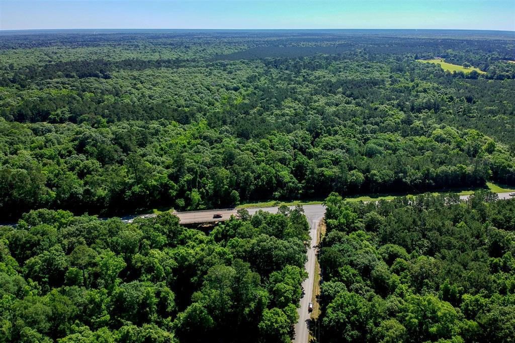 TBD 22 acres 321 Highway Property Photo - Dayton, TX real estate listing