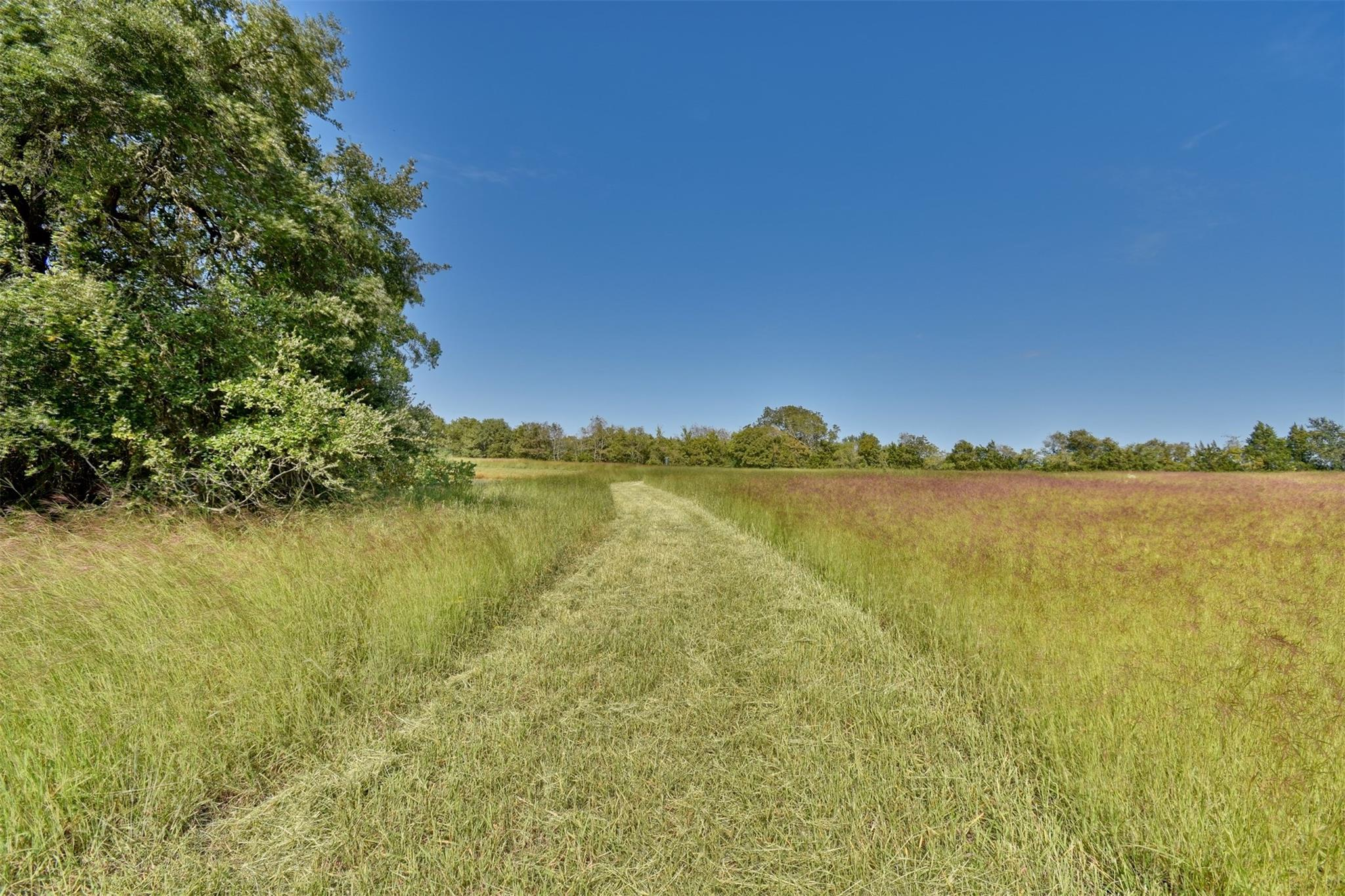 1108 S Marburger Lane Property Photo - Round Top, TX real estate listing