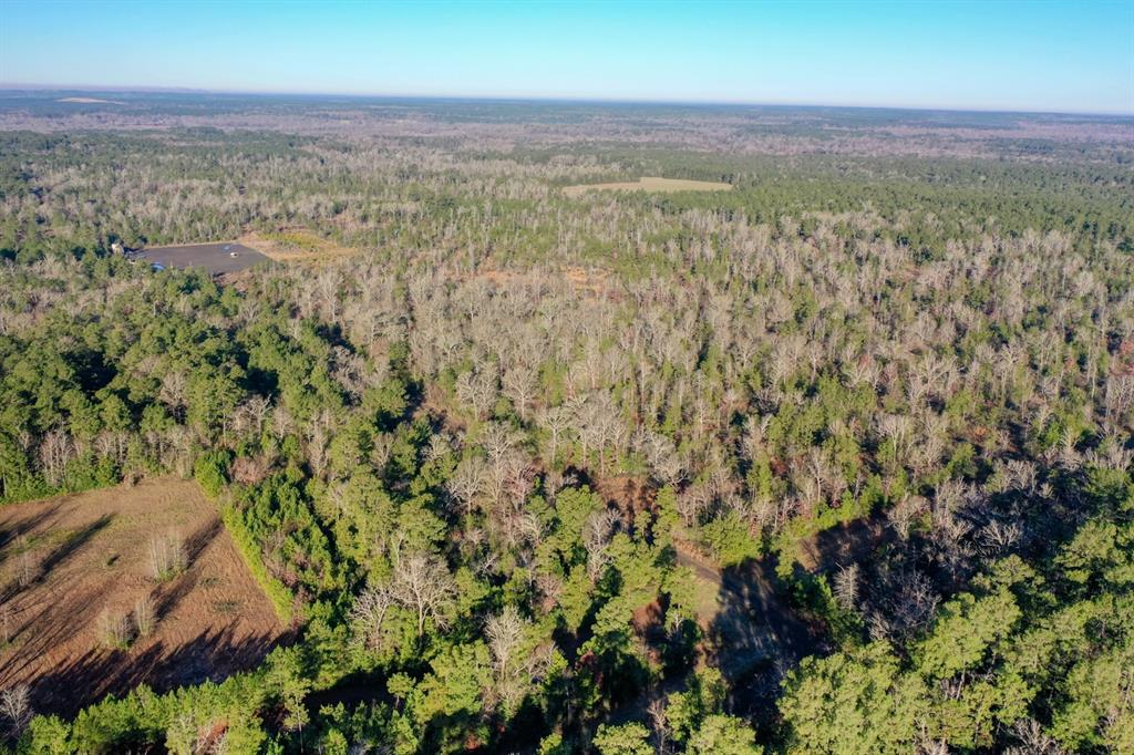TBD Hwy 59 Property Photo - Livingston, TX real estate listing