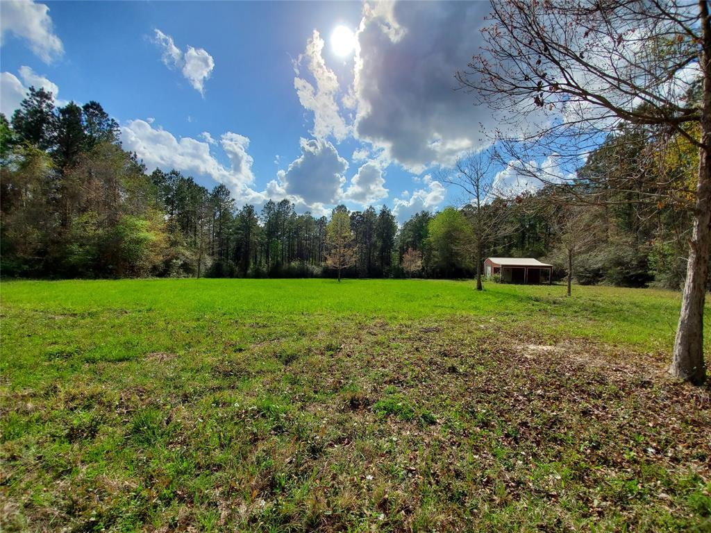 000 Fm 1005 Property Photo - Kirbyville, TX real estate listing