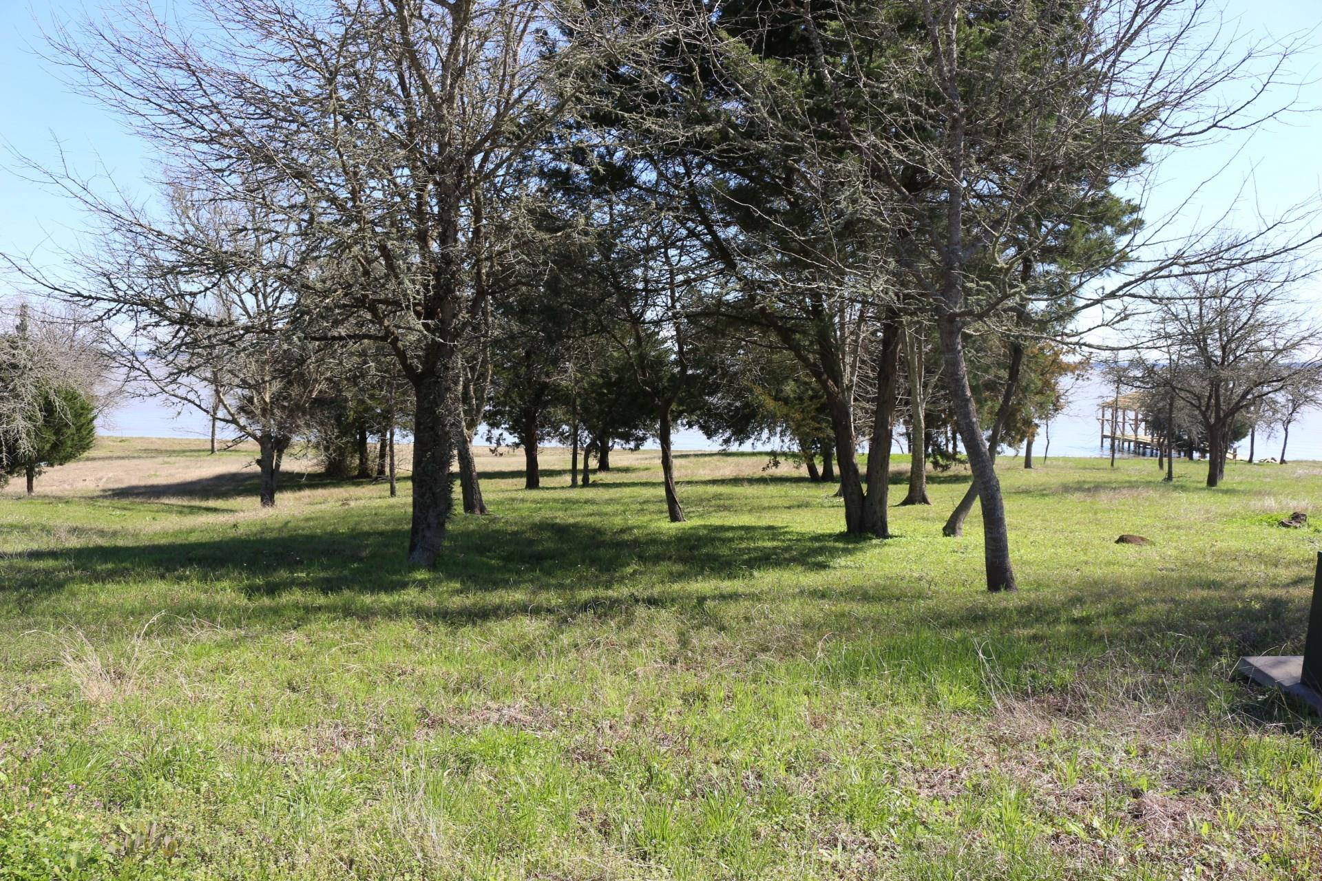 1314 Heritage Drive Property Photo - Point Blank, TX real estate listing
