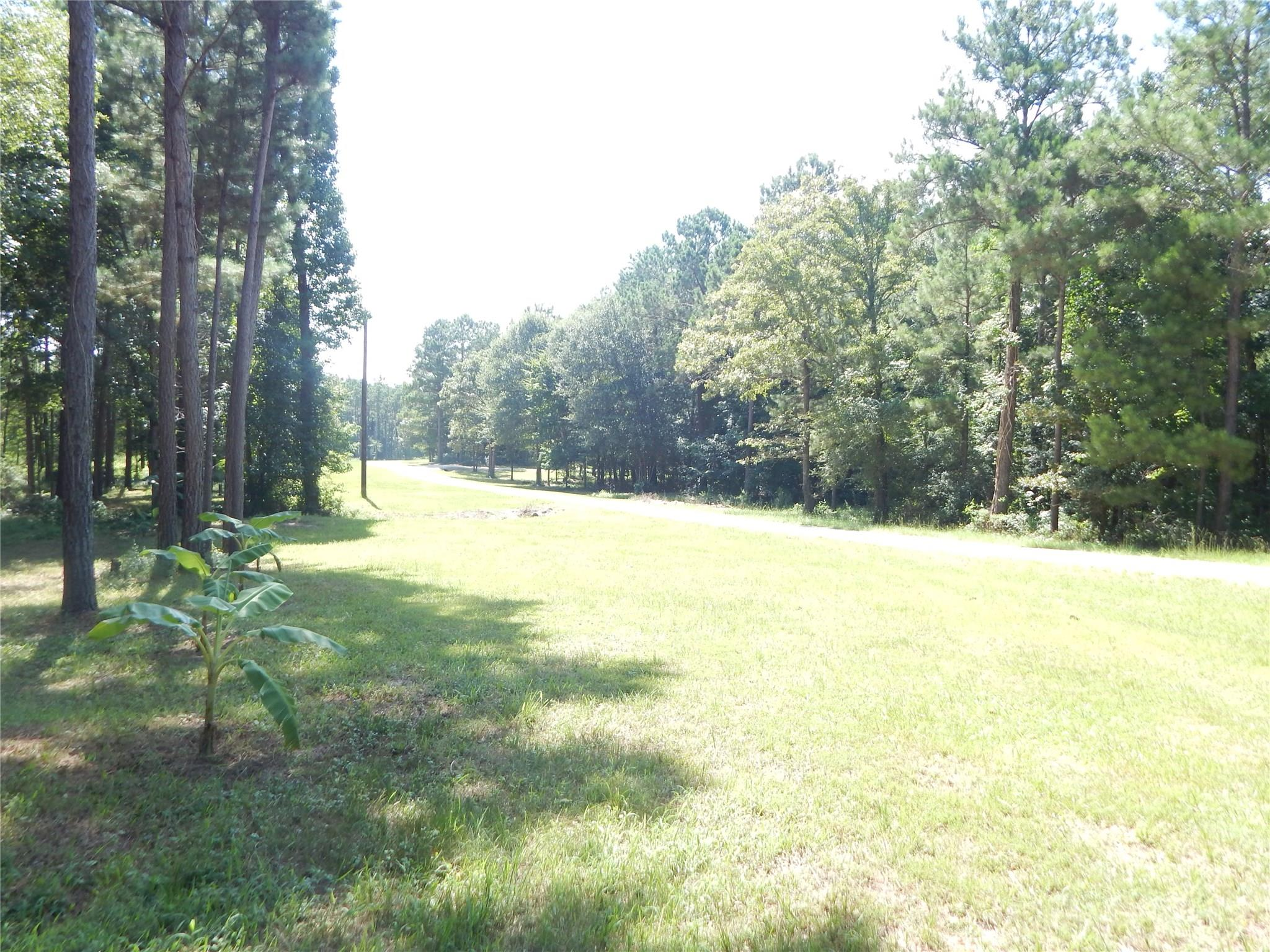 0 Deep Forest Trail Property Photo