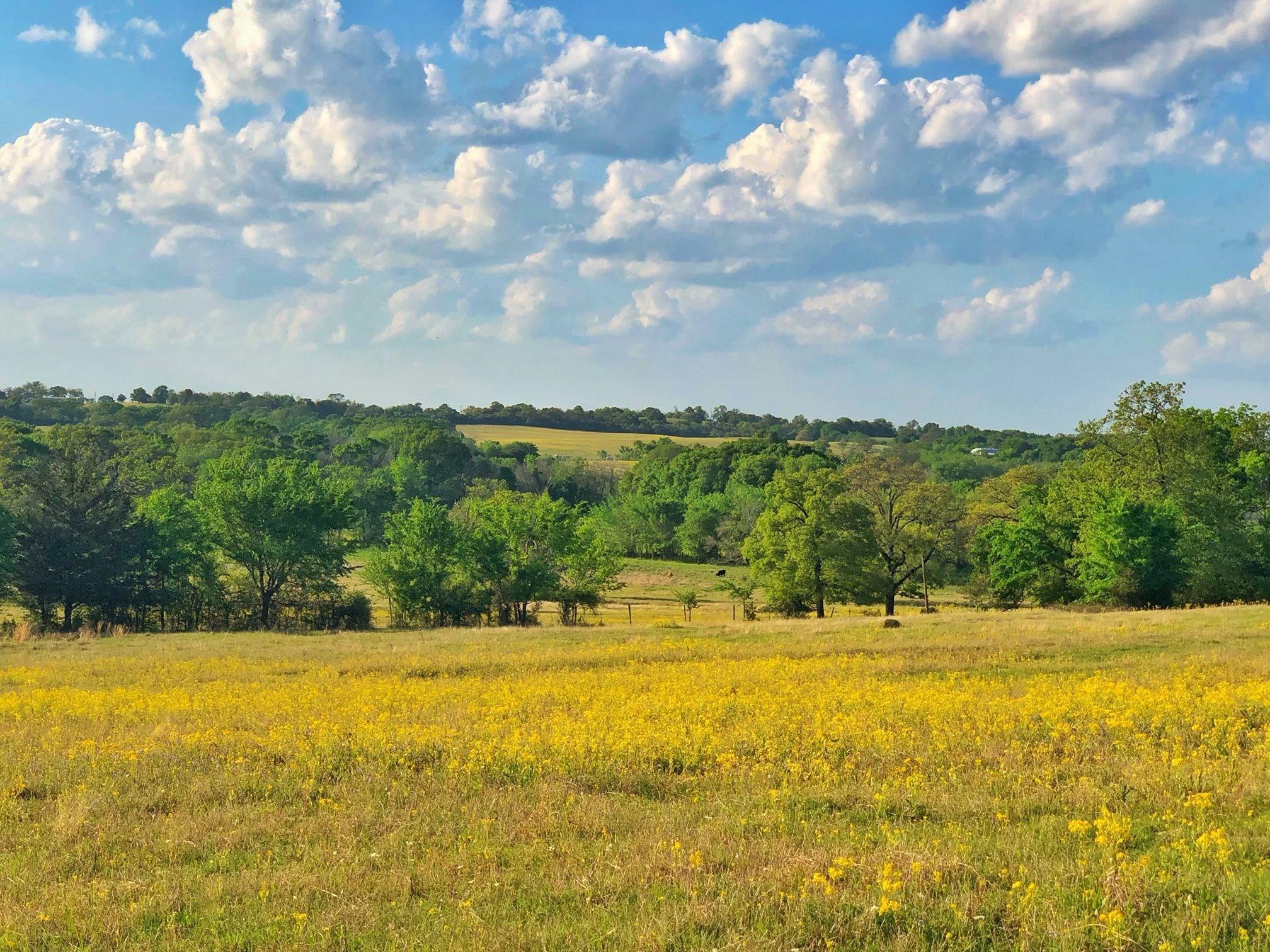 5345 Fm 3 South Property Photo 1