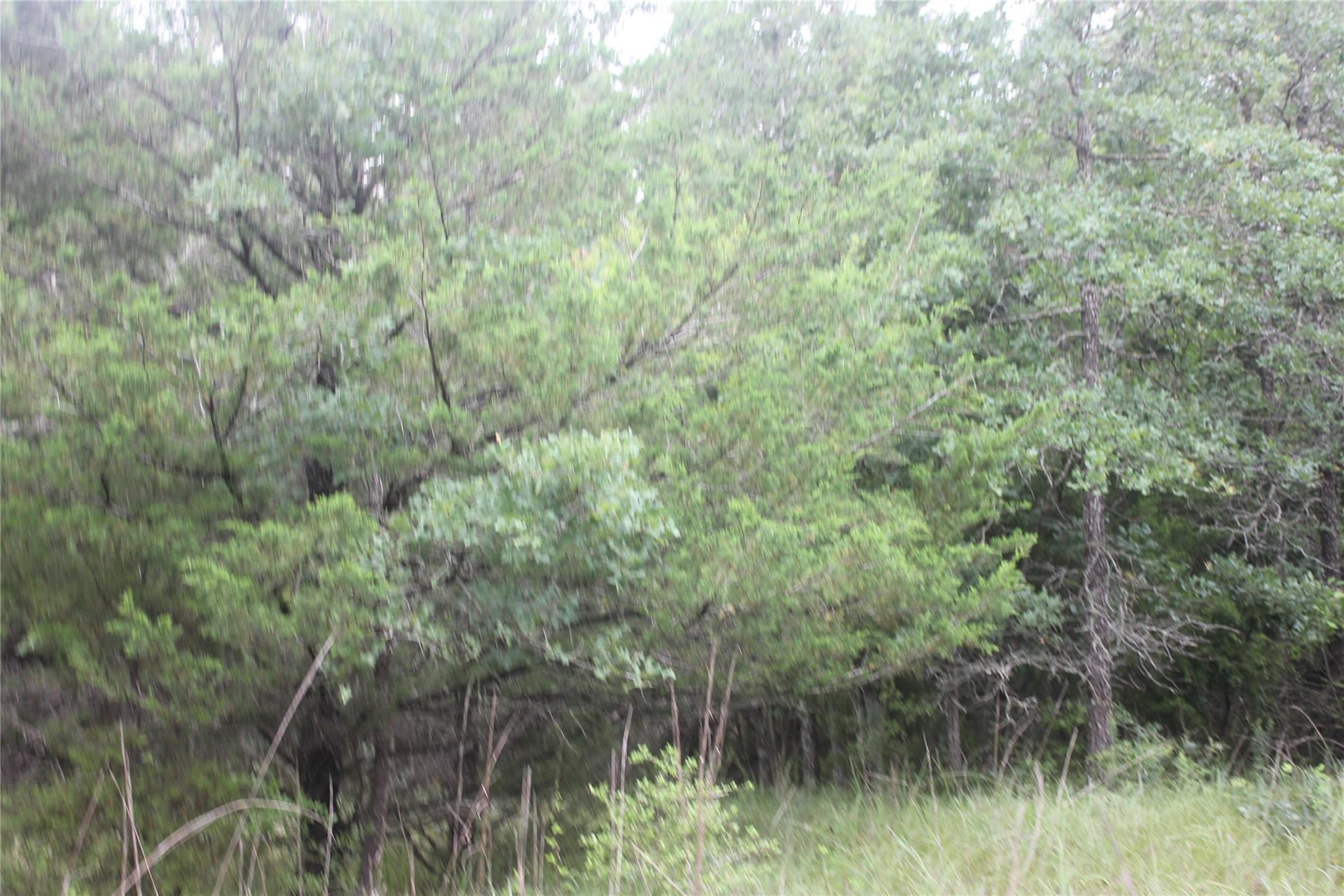 Tbd Rose Hill Rd Property Photo