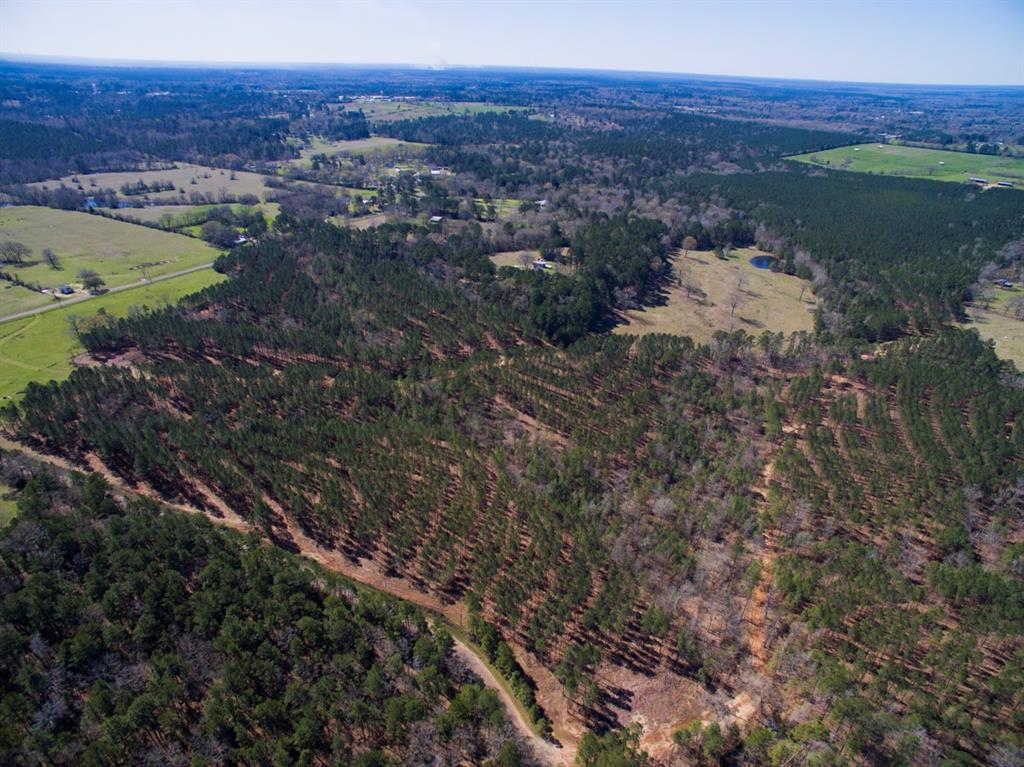 000 Fenley Flat Road, Pollok, TX 75969 - Pollok, TX real estate listing
