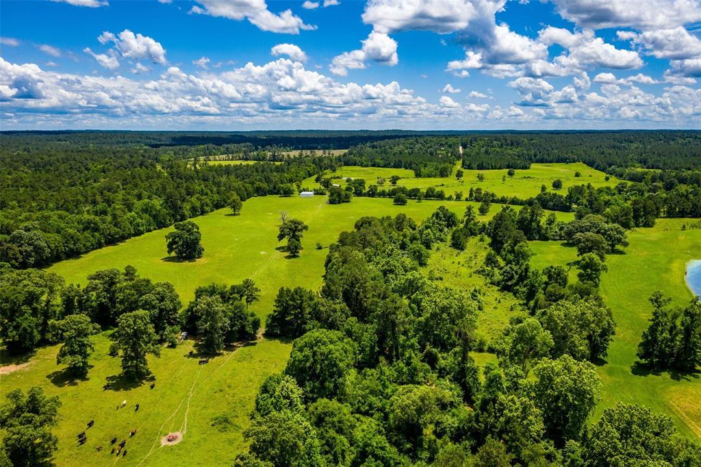 181 Acres Ravenwood Road Property Photo - Huntsville, TX real estate listing