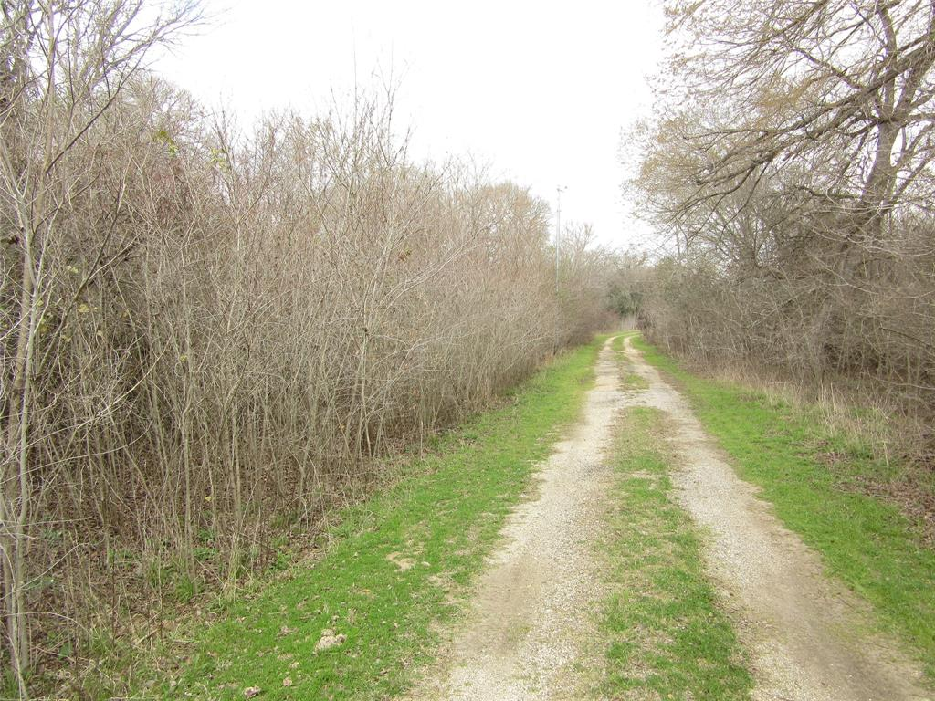 0000 Doe Run Drive Property Photo - Cistern, TX real estate listing