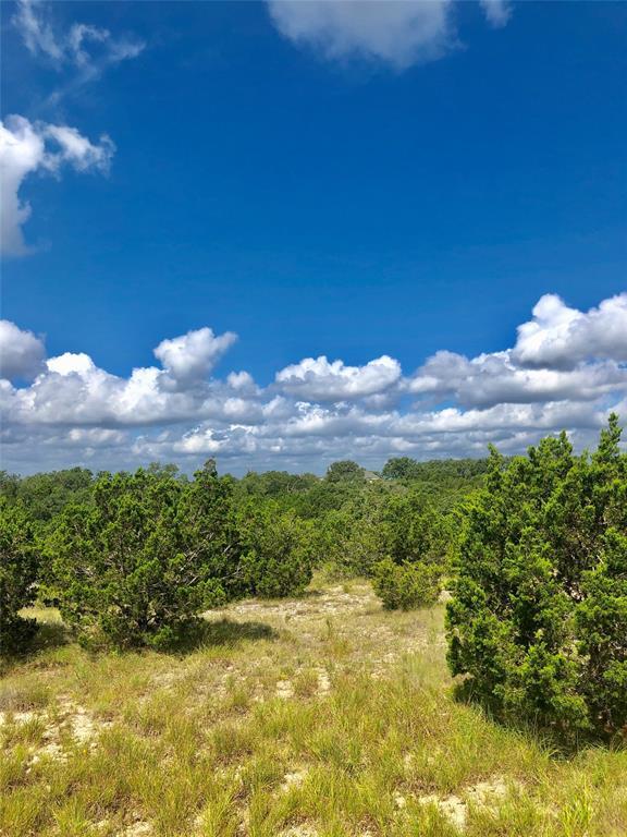 146 Peppergrass Drive, Spring Branch, TX 78070 - Spring Branch, TX real estate listing