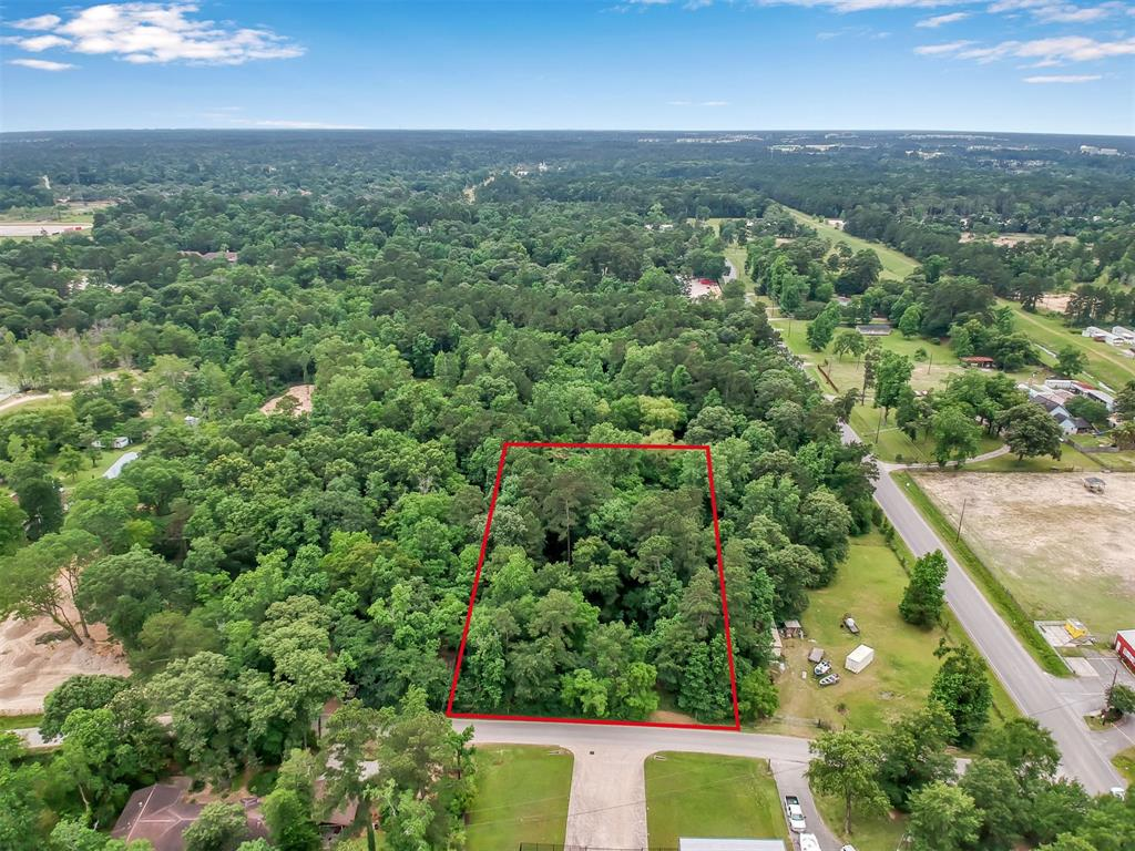 0 Darby Loop Property Photo - Conroe, TX real estate listing