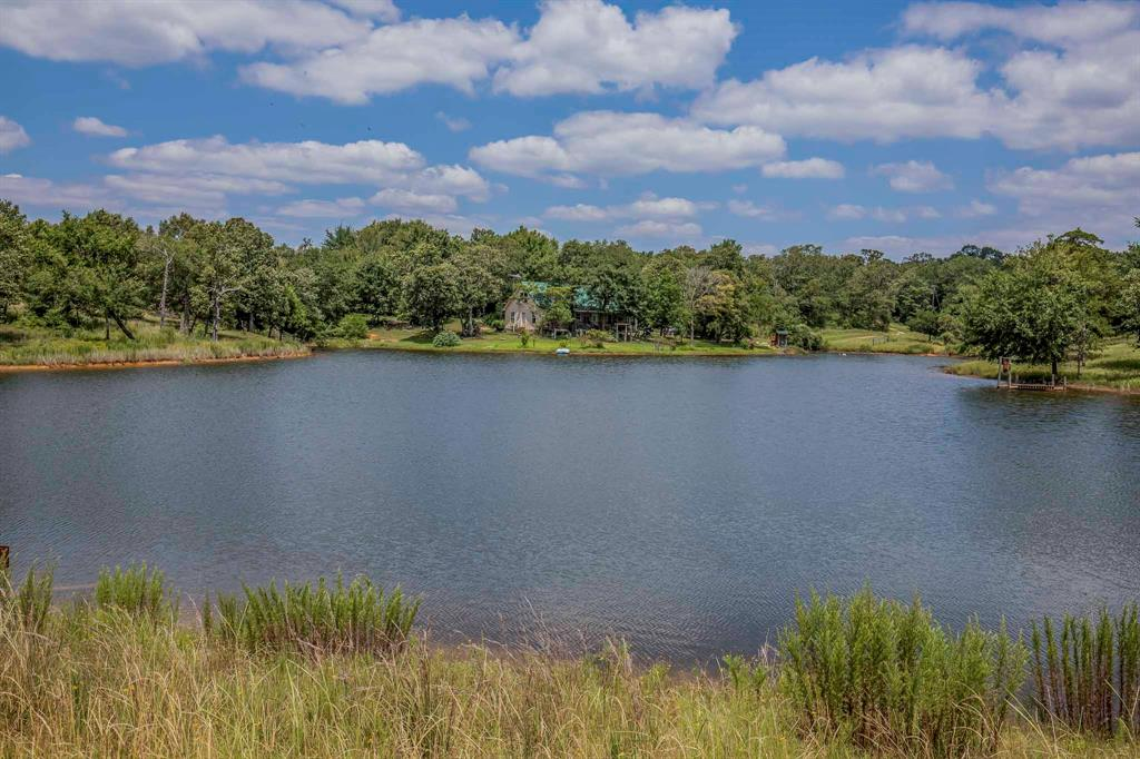 19320 County Road 431 Property Photo - Marquez, TX real estate listing
