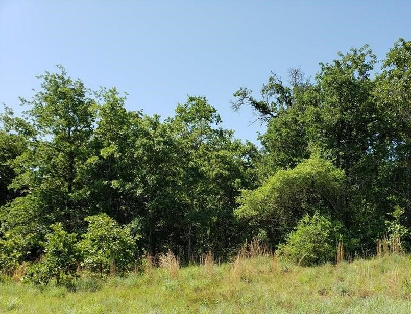 27 Acres CR 330, Milano, TX 76556 - Milano, TX real estate listing