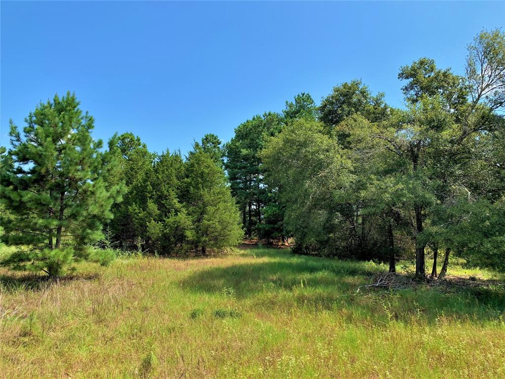 2 Schwanbeck Road, Cat Spring, TX 78933 - Cat Spring, TX real estate listing