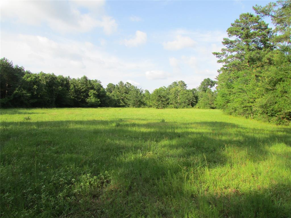 1374 Fm 1374 Property Photo - Huntsville, TX real estate listing