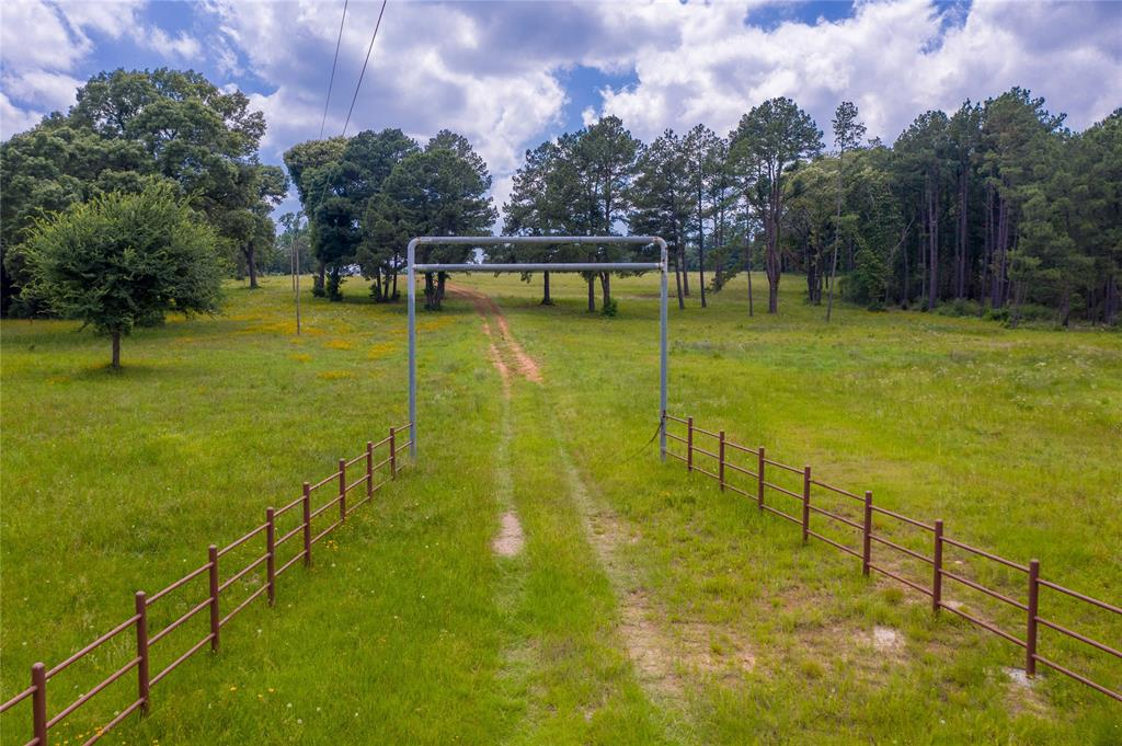 15093 County Road 236 Property Photo - Buffalo, TX real estate listing