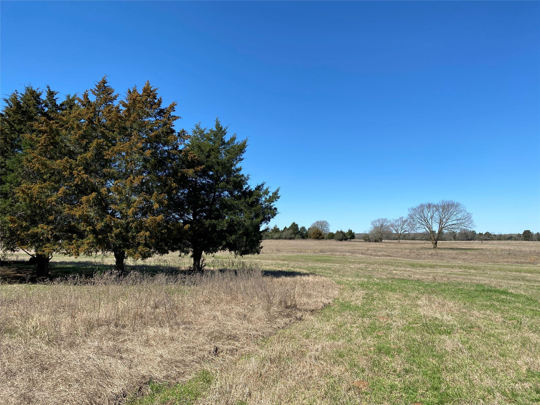 00 County Road 107 Property Photo - Lincoln, TX real estate listing