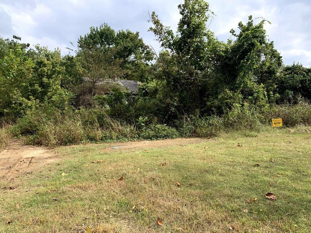 101 Short Ohio Street Property Photo - Other, AR real estate listing