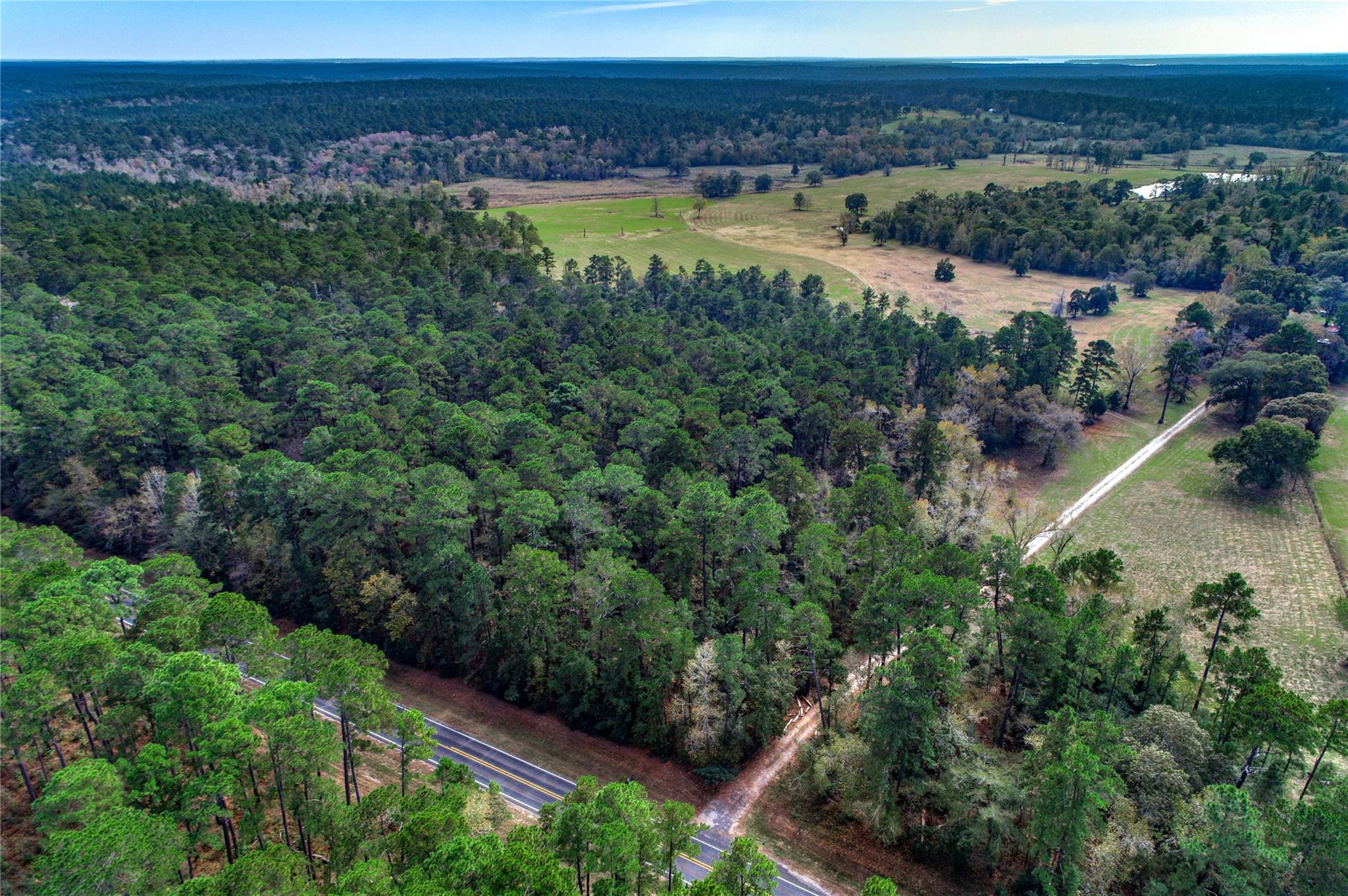 5500 Fm 1374 Road Property Photo - Huntsville, TX real estate listing