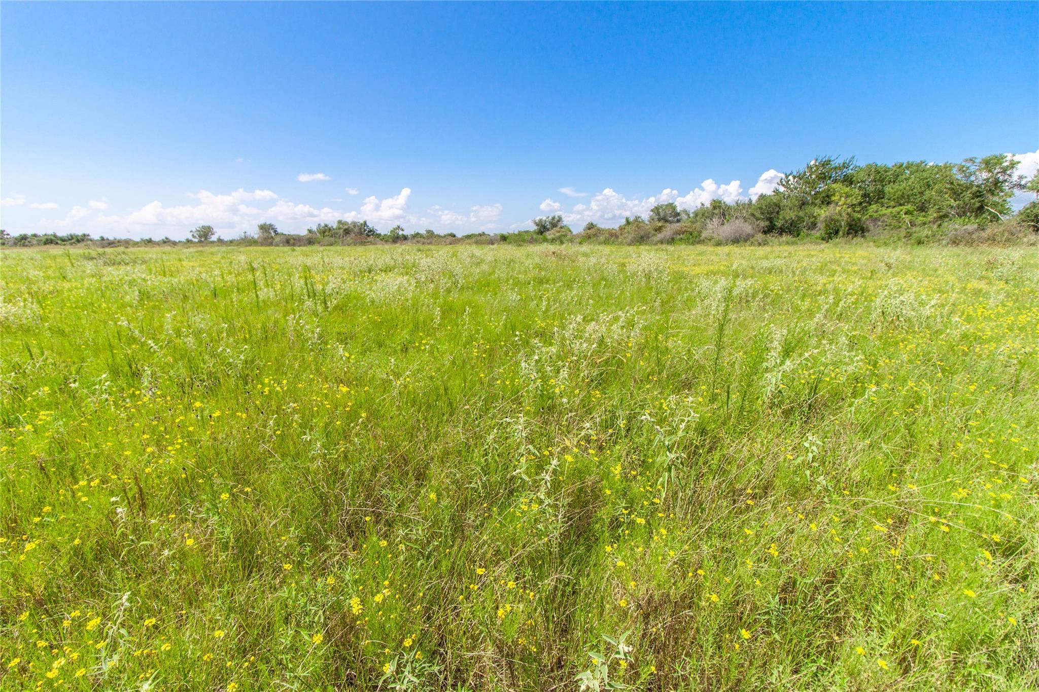 0000 Milton Road Property Photo