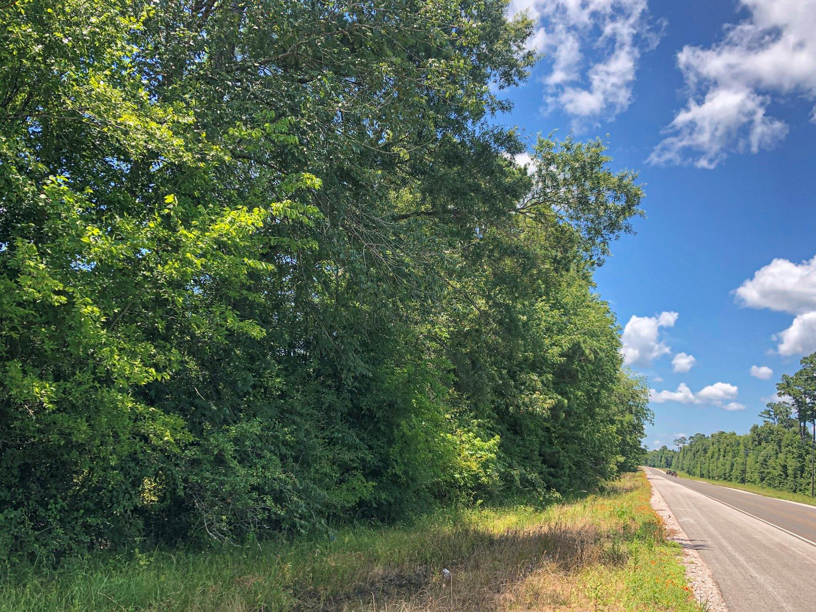 0 W Of Hwy 146 N Property Photo - Cleveland, TX real estate listing