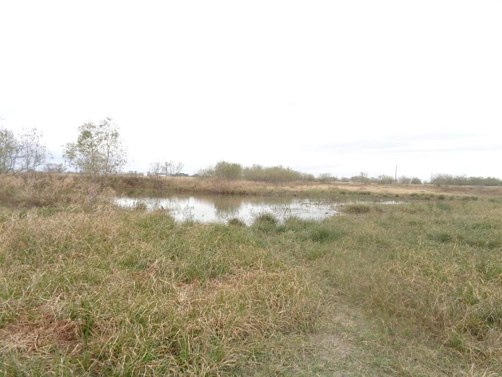 TBD Strickland Lane, Eagle Lake, TX 77434 - Eagle Lake, TX real estate listing