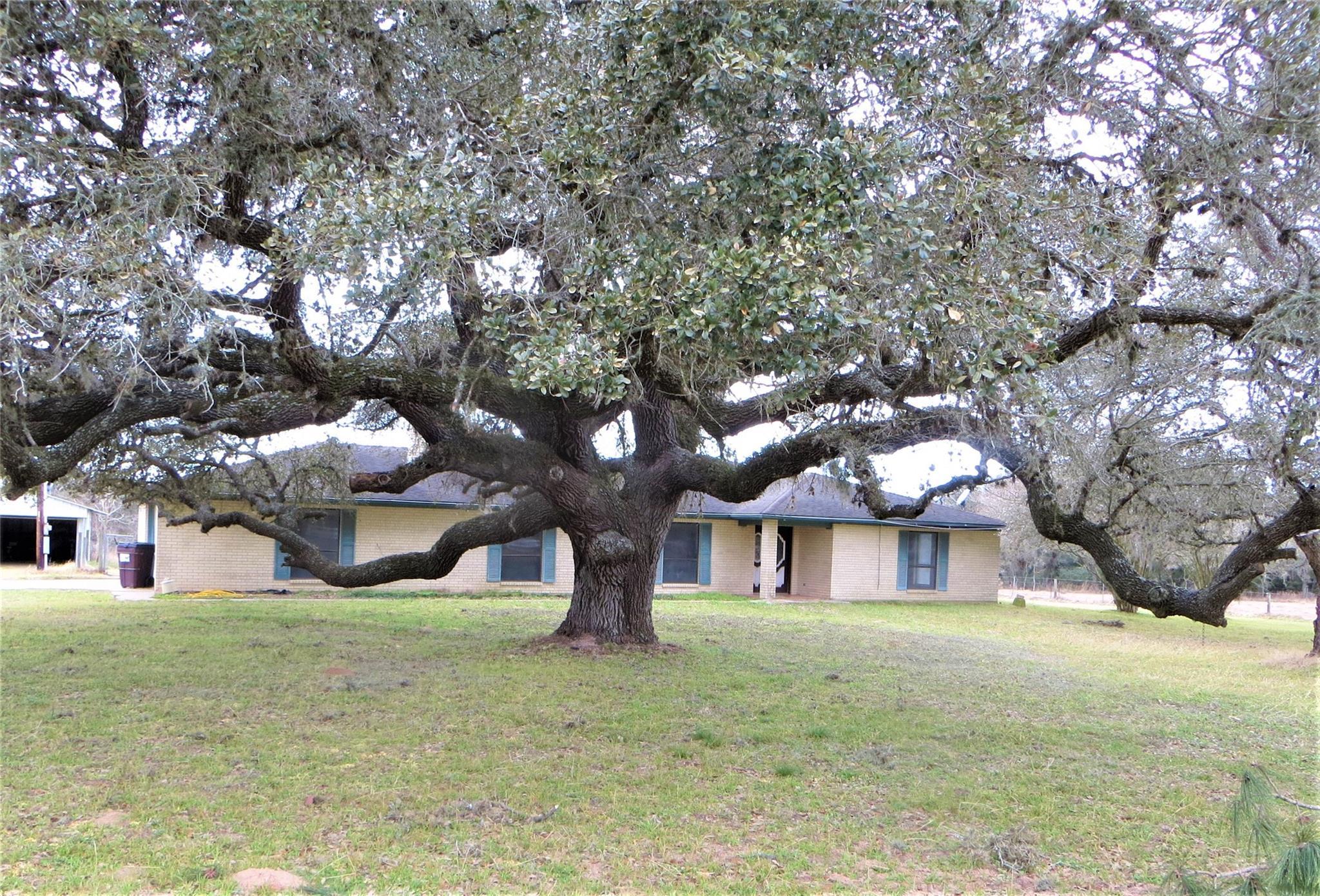 1226 Fm 2437 Property Photo